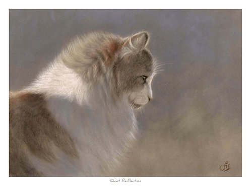 'Quiet Reflection' Open Edition Cat Print