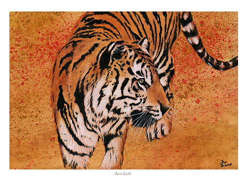 'ASIAN GOLD' OPEN EDITION TIGER PRINT