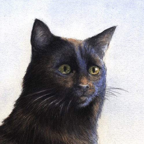'A NIGHT ON THE TILES' OPEN EDITION CAT PRINT