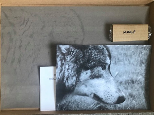 Wolf in Pastel Box Set