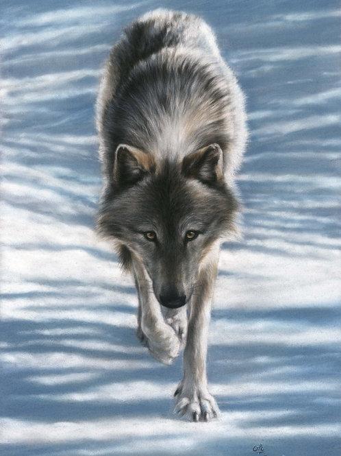 Winter's Trail - Original Wolf in Pastel