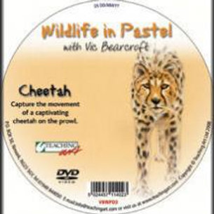 WILDLIFE IN PASTEL DVD - CHEETAH