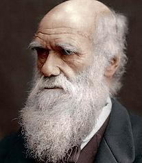 Darwin Ref.jpg