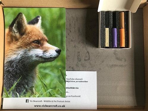 Fox in Pastel Box Set