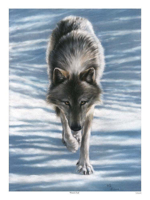 'WINTER'S TRAIL' LIMITED EDITION WOLF PRINT