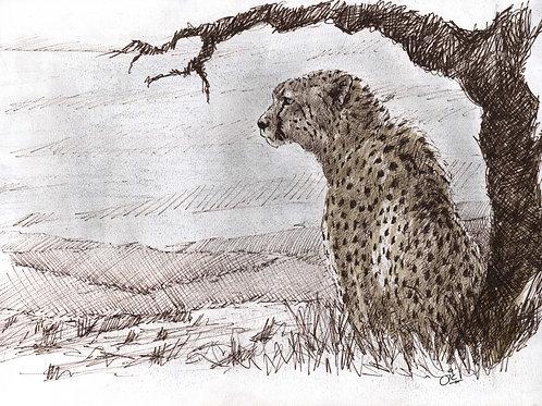 The Lookout Original Sketch