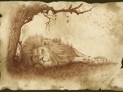 Siesta - Original Sepia Pencil Drawing