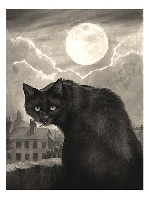 'AFTER DARK' OPEN EDITION CAT PRINT