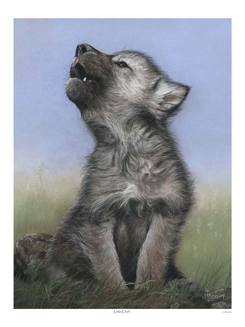 'LITTLE CHIEF' LIMITED EDITION WOLF PUP PRINT