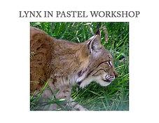 Lynx Workshop Box Set