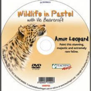WILDLIFE IN PASTEL DVD - AMUR LEOPARD