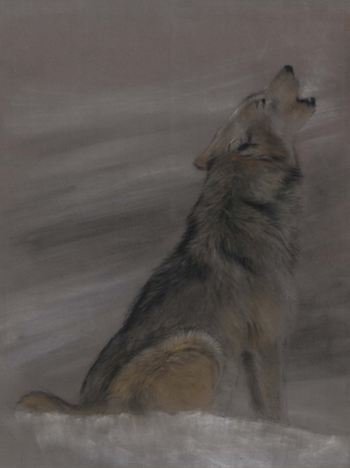 Howling Wolf Original Pastel Painting
