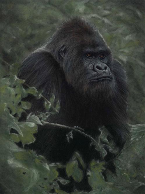 Original Gorilla Pastel Painting