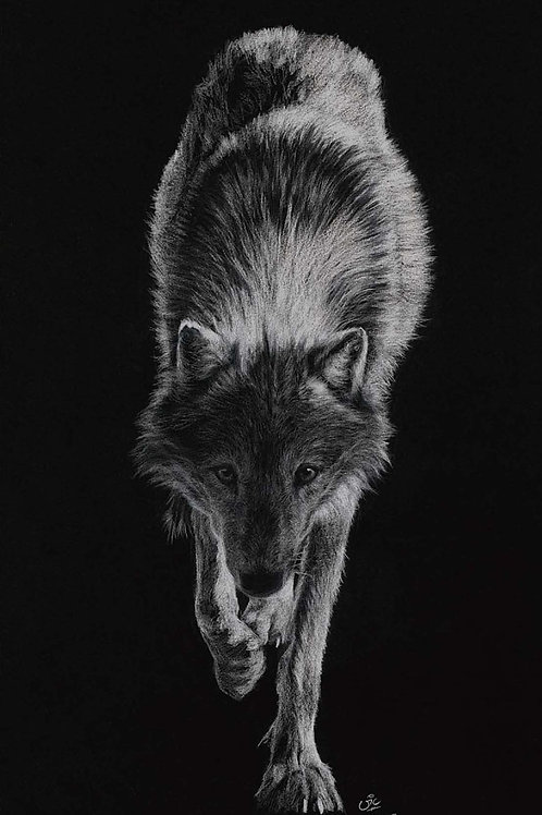 Night of the Hunter - Original Wolf Drawing