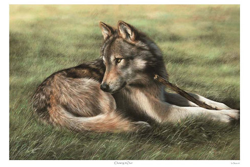 'CHEWING IT OVER' LIMITED EDITION WOLF PRINT