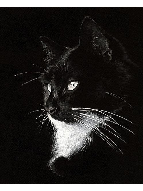 'LEON' OPEN EDITION TUXEDO CAT PRINT