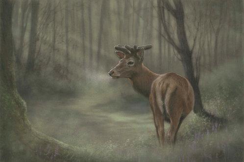 Misty Glade - Original Deer in Pastel