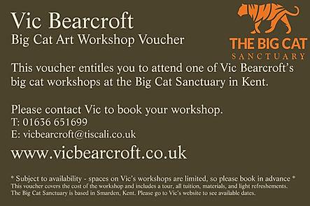 £120_Big_Cat_Voucher_copy.jpg