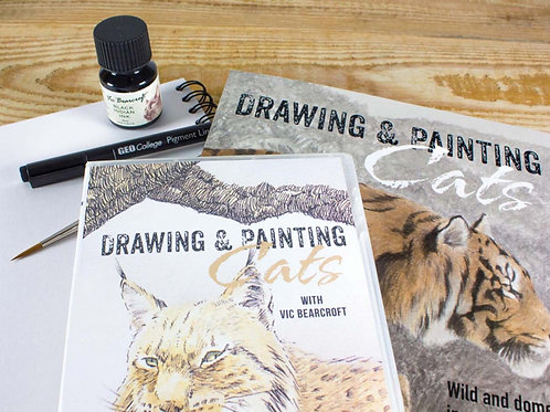 DRAWING & PAINTING CATS COMPLETE SET