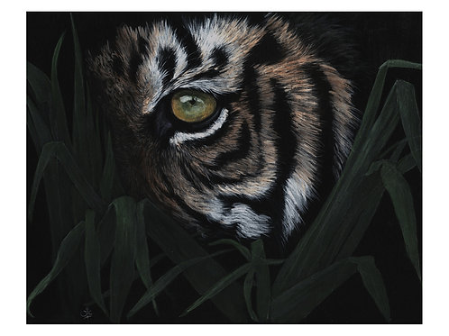 'EYE OF THE TIGER' OPEN EDITION TIGER PRINT
