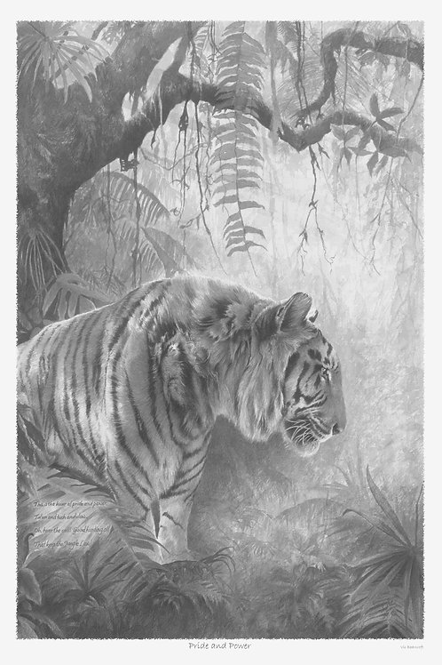 'PRIDE & POWER' LIMITED EDITION TIGER PRINT