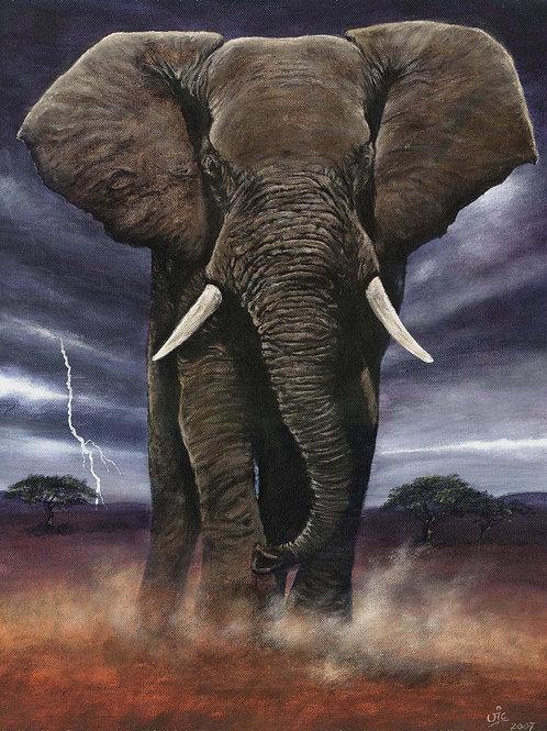 Rolling Thunder - Original Elephant in Acrylic on Canvas