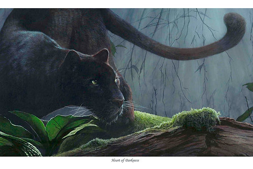 'HEART OF DARKNESS' LIMITED EDITION PANTHER PRINT