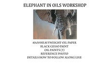 Elephant in Oils Workshop Kit (Without brushes)