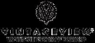 Vintage-View-logo.png