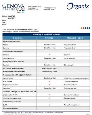 Organix Comprehensive Profile, urine: 3301