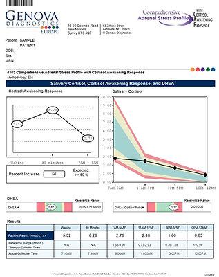 Comprehensive Adrenal Stress Profile; saliva: END02