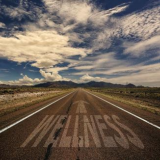 Desert highway with the word wellness an