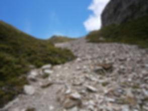 rocky_path.jpg