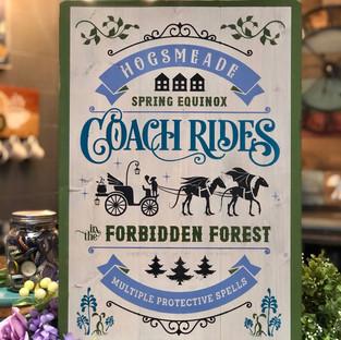 Coach Rides