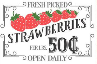 #1409 Fresh Strawberries