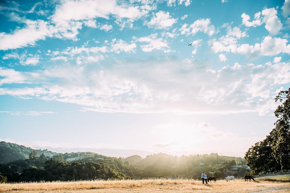 Maternity photos in big open field in Palo Alto