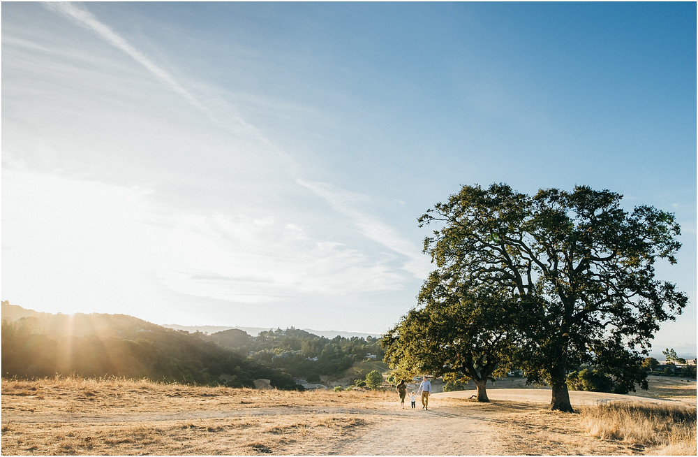 Wide shot of family walking in open field during golden hour