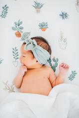 Santa Clara newborn photography