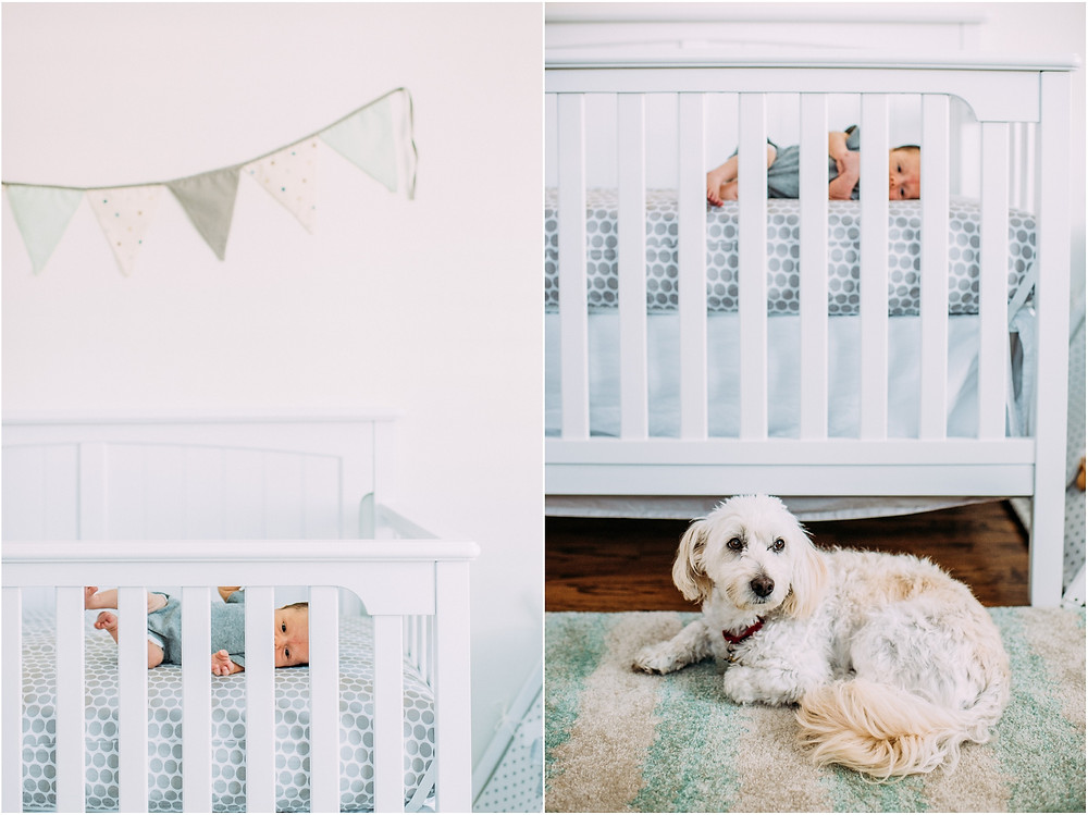 Dog laying in front of crib with new baby inside