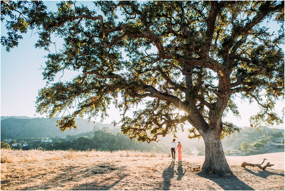 Couple under oak tree in Los Altos, Ca for maternity photographer in Bay Area