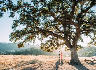 Jackie & Nick Sneak Peek - Los Altos Golden Hour