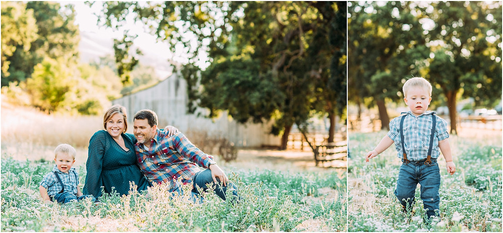 Family sitting in flower field in front of rustic barn in San Jose, Ca for maternity pictures
