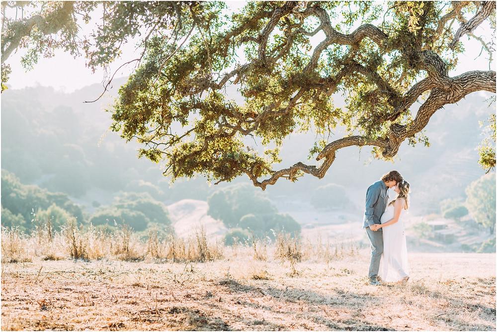Wide shot of couple standing under an oak tree in Los Altos, Ca