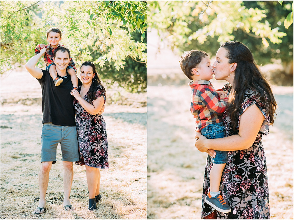 Family photography under a tree at sunset in Silicon Valley