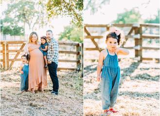 Amirkhas Family Golden Hour Session | San Jose Maternity Photographer