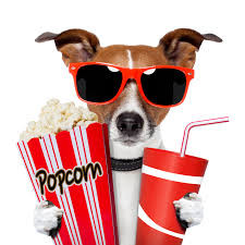 Join us for Movie Night every Thursday