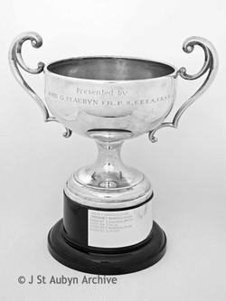Folkestone Landscape Cup