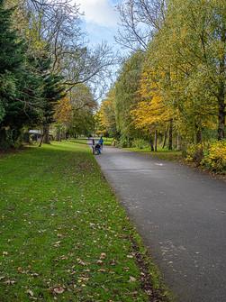 Alexandra Park 3