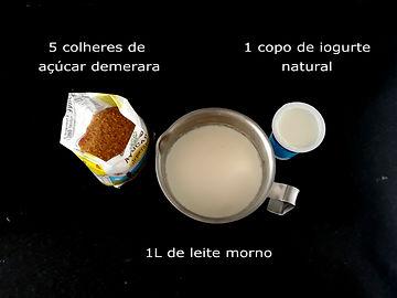 Ingredientes iogurte copy.jpg