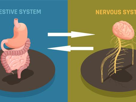 A relação entre cérebro e intestino